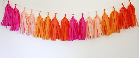Tissue Tassel Garland Kit-Bright