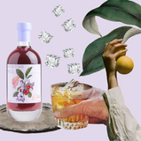 the bottled bar | Collage Aperitivo No. 1