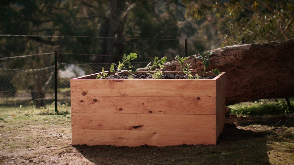 Sustainable Timber Planter Box