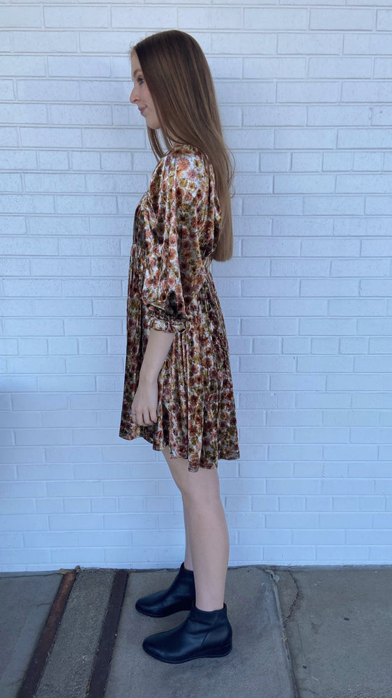 Meadow Velvet Dress