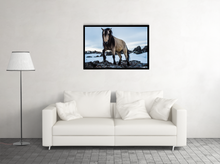 Load image into Gallery viewer, Icelandic Horse