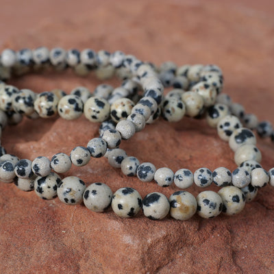 Dalmation Jasper Bracelet - Crystal Magic online
