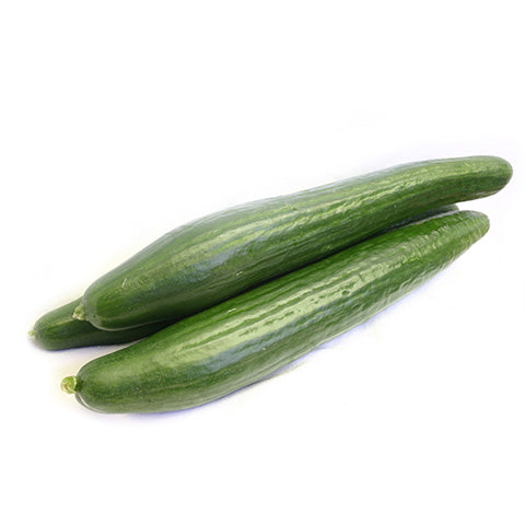 Hot House Cucumber