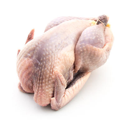 Hudson Valley Farm, Whole Guinea Hen (4lbs)