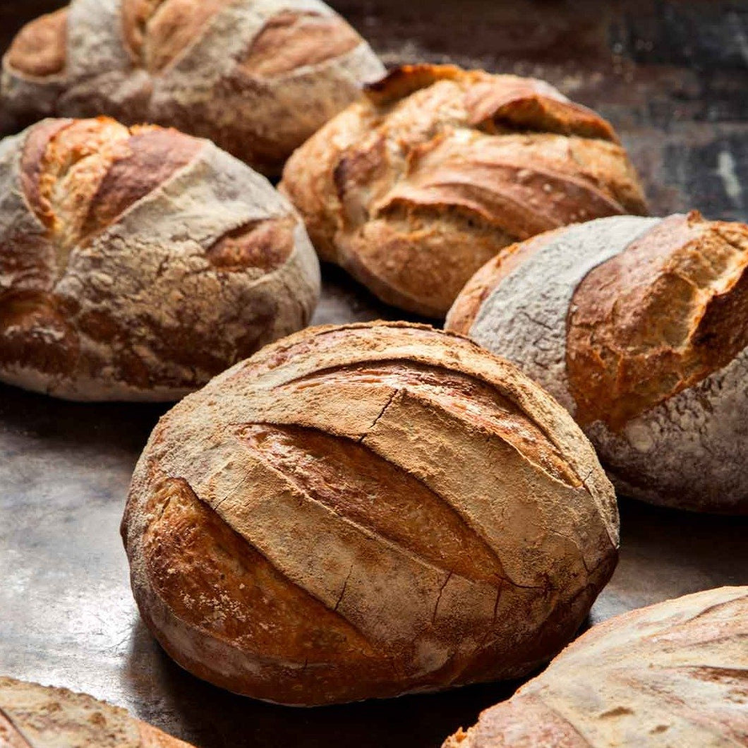 Carissa's Bread of the Week (only Hamptons pick-up)^
