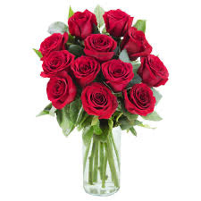 A Dozen Long Stem Red Roses (Delivery Included)