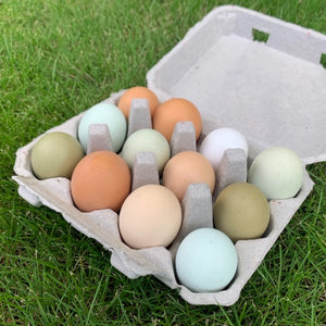 Organic-Pasture Raised-Soy Free-Local Eggs