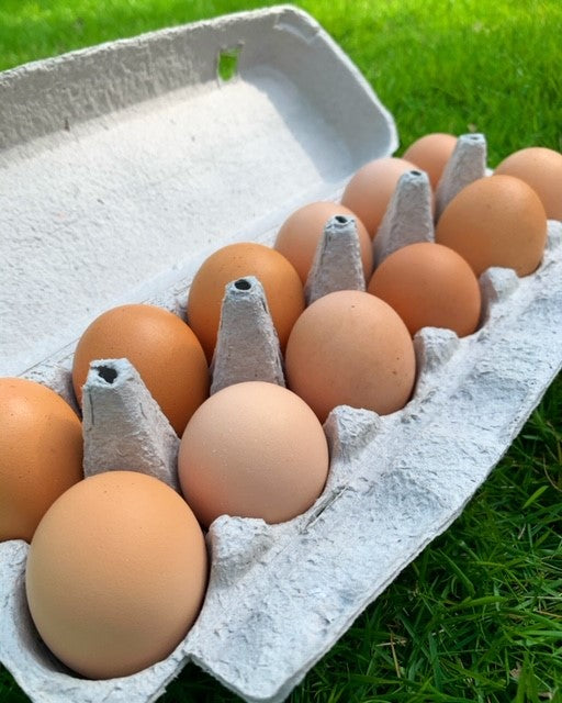 Free Range Local Eggs