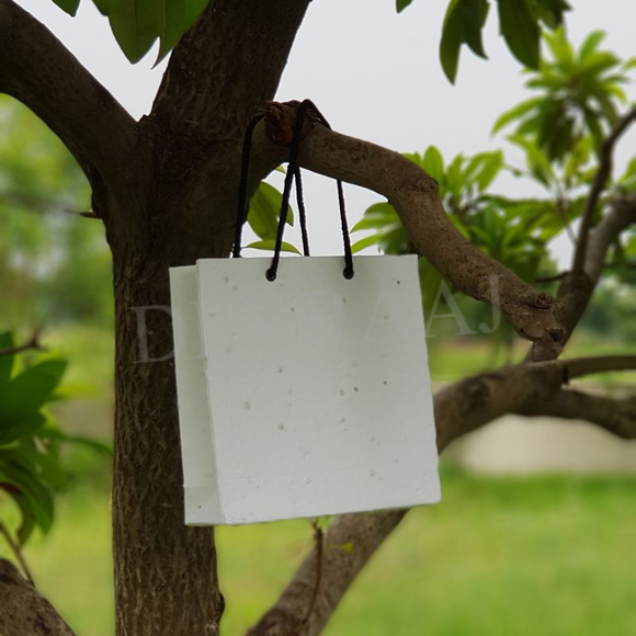 Eco-Friendly Plantable Seed Paper Bags perfect for wedding birthday engagement gifts and corporate gifting made by hand