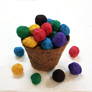 Plantable seed balls available in various colours filled in coconut coir pot