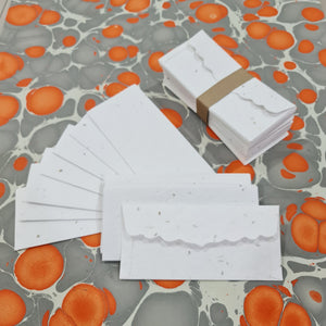 Plantable Seed Paper Money Envelopes - Without Print