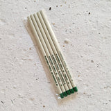 Seed pencils in pack of 5 white pencils with seed name printed on pencil