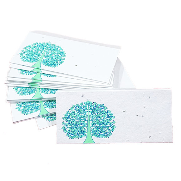 Plantable Seed Paper Money Envelopes