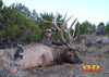 Chris Roe - The What Who and Why of Elk Hunting
