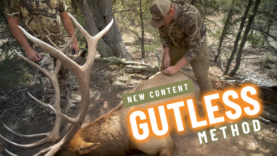 Elk Gutless Method Field Care Preview