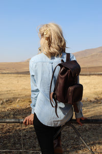 box backpack in brown