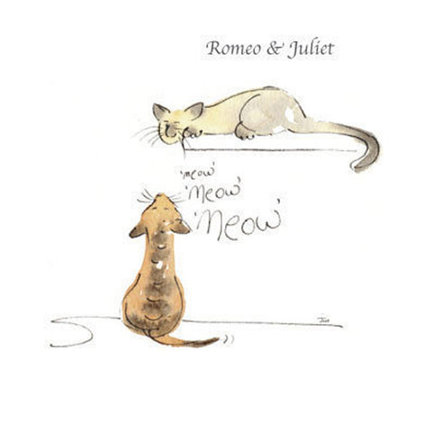 "Classical Cats ""Romeo & Juliet"" Greetings Card - HerbysGifts.com"
