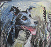 Border Collie Greeting Card - HerbysGifts.com