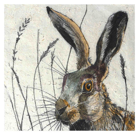 Hare Greeting Card - Blank Inside - 6.5 x 6 Inches - HerbysGifts.com