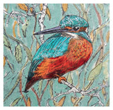 Kingfisher Greeting Card - Blank Inside - 6.5 x 6 Inches - HerbysGifts.com