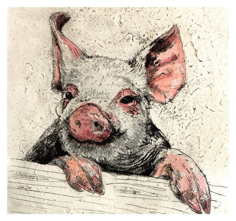 Pig Birthday Card - Blank - HerbysGifts.com