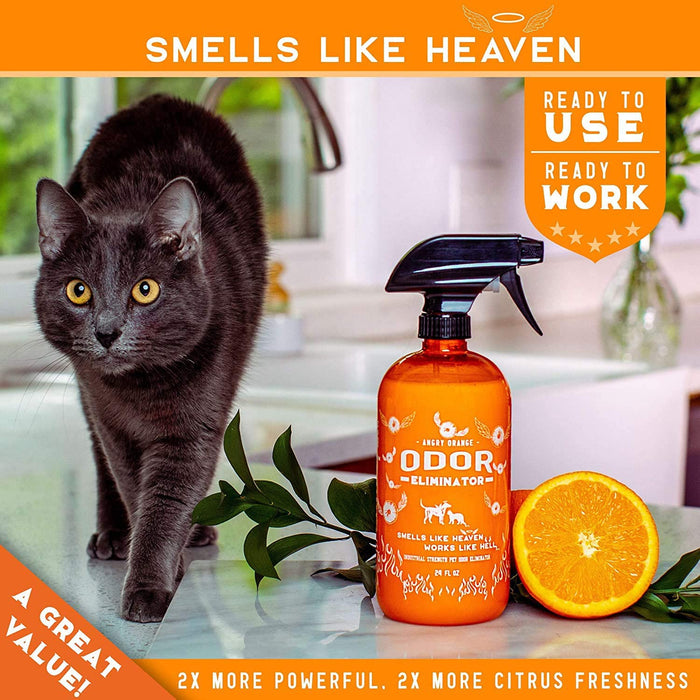 ANGRY ORANGE Ready-to-Use Citrus Pet Odor Eliminator Pet Spray - Urine Remover and Carpet Deodorizer for Dogs and Cats