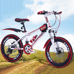21-speed multi-size sport disc brake mountain bike