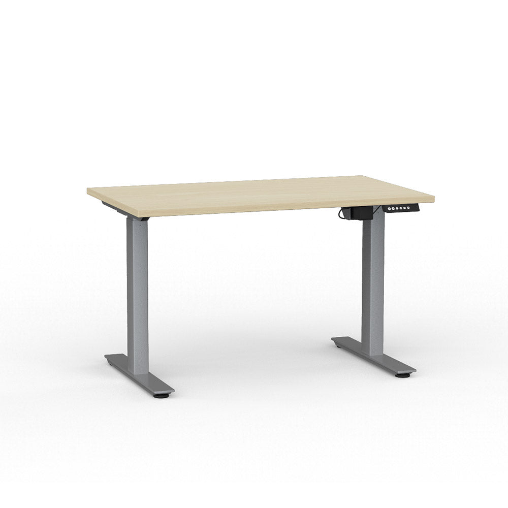 ELECTRIC SIT / STAND DESK 1200L