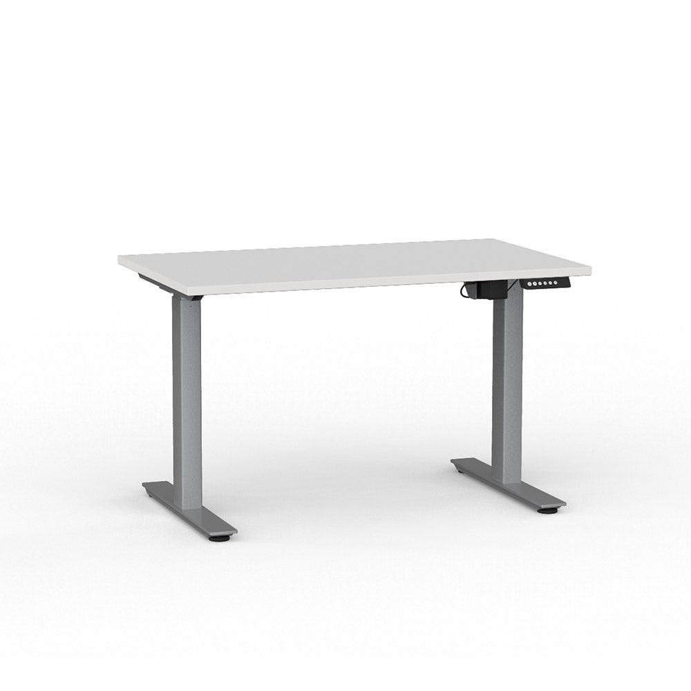 WGTN SPECIAL: ELECTRIC SIT / STAND DESK : ASSEMBLED