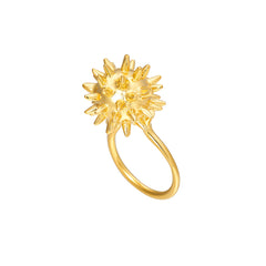 Morning Star Ring - Stronger than before!