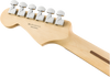 FENDER Player Stratocaster® HSS Pau Ferro Black