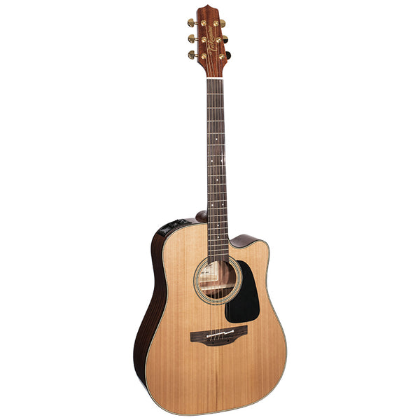 TAKAMINE PS2DCNG
