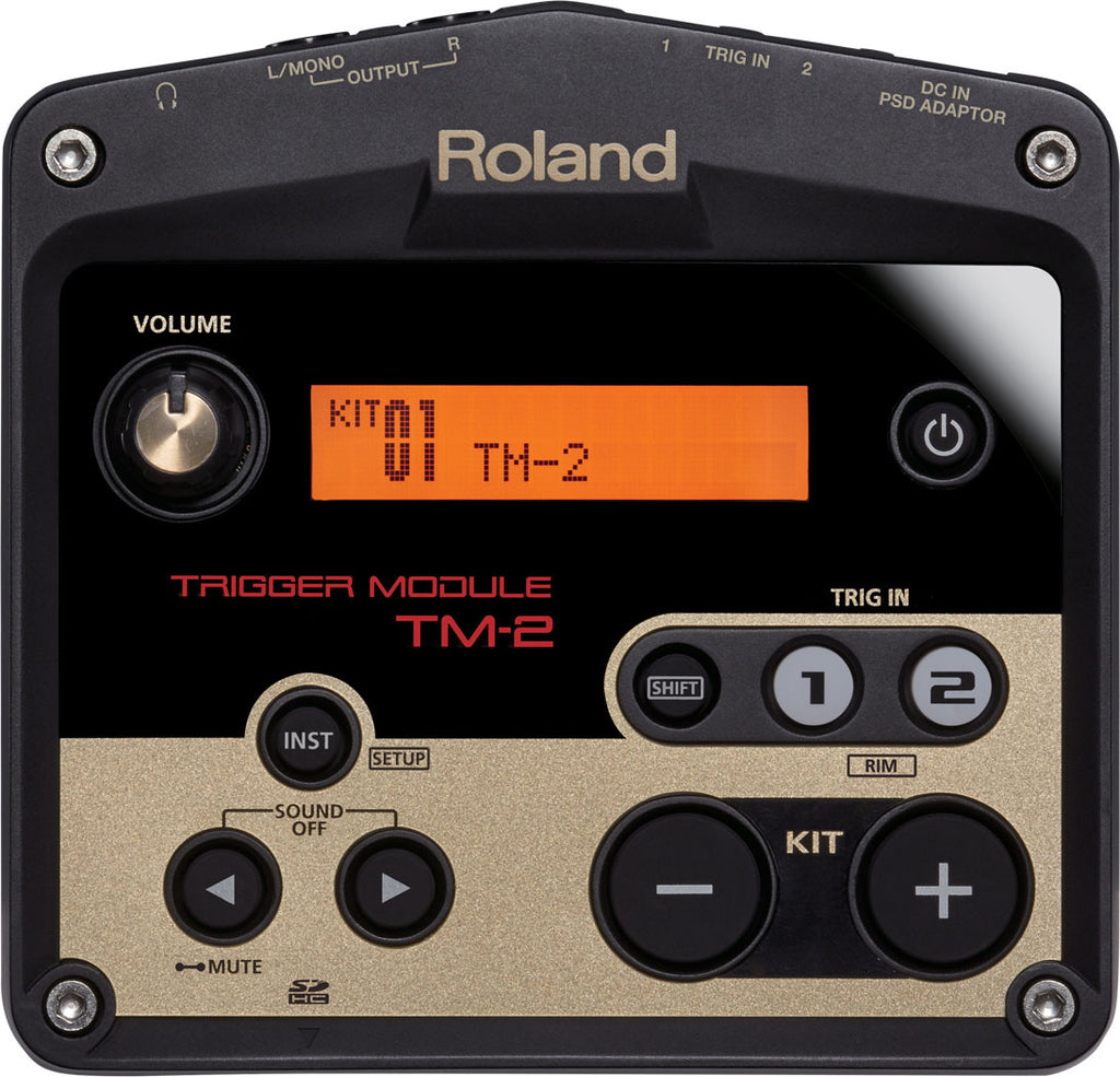 ROLAND Tm2 - La Pietra Music Planet