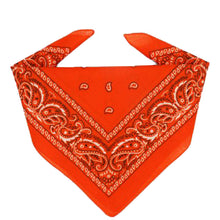 Load image into Gallery viewer, Orange Bandana