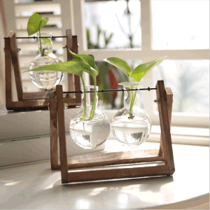 Hot selling home decor water planting glass flower vase with wooden frame creative modern glass vase