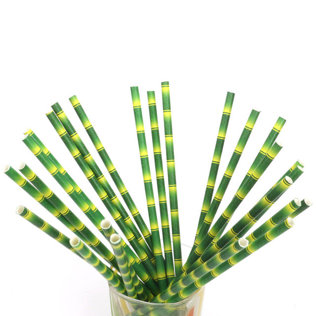 Drinking Bamboo Paper Straw - Set of 25 - Oh Happy Fry - we ship worldwide