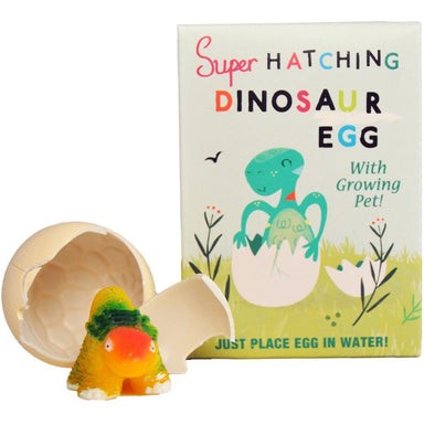 Hatch Your Own Dinosaur Egg - Oh Happy Fry - we ship worldwide