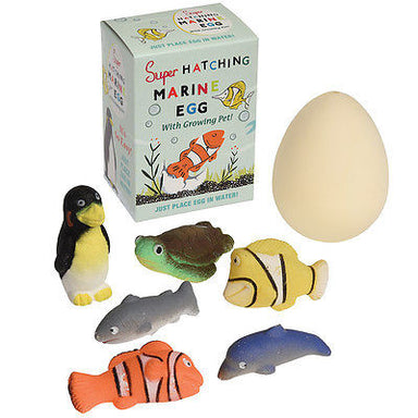 Make Your Own Marine Animal - Oh Happy Fry - we ship worldwide