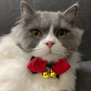 Red Bowknot Necklace for Pets