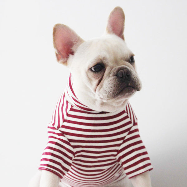 Pet Striped Short Sleeve