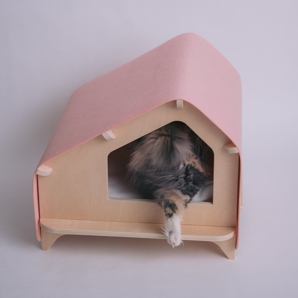 Rawrycabin in Pink with cat stepping inside