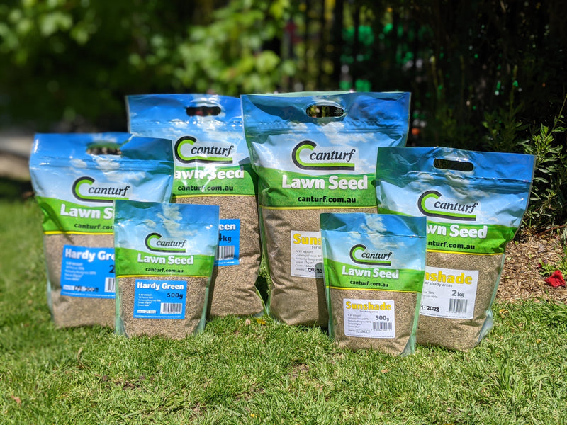 Now is the perfect time to treat your lawns!