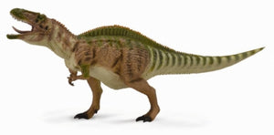 Acrocanthosaurus (with movable jaw)