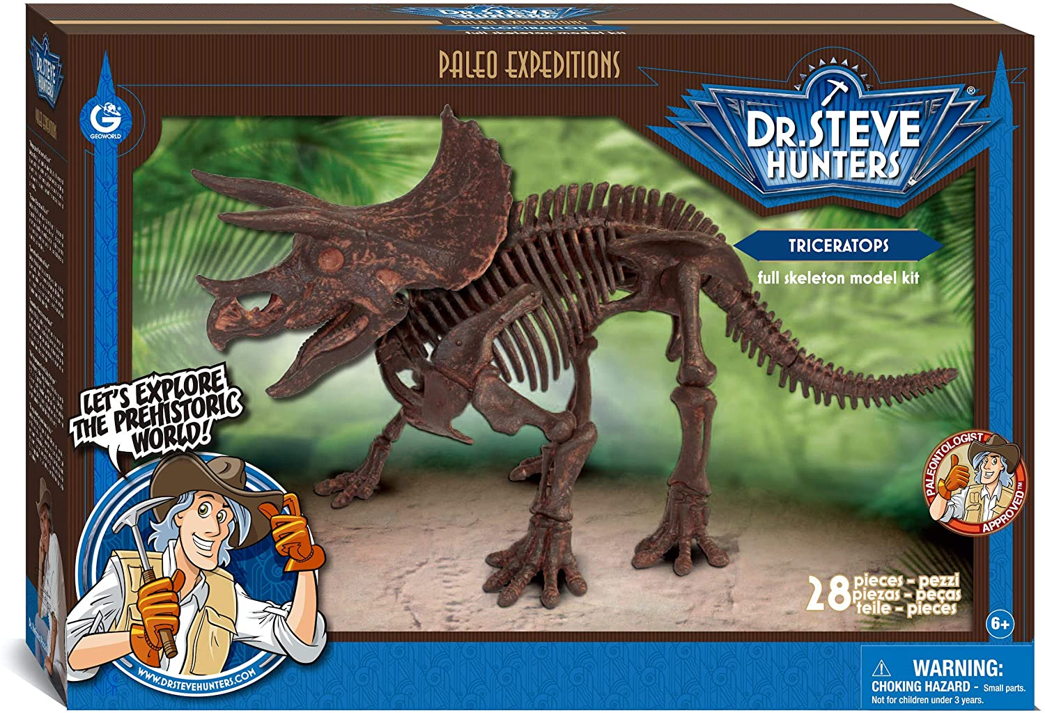 Triceratops skeleton model kit