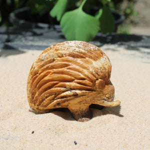 Echidna Carving - Picture Sandstone