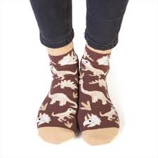 Kids Dinosaur Bones Socks
