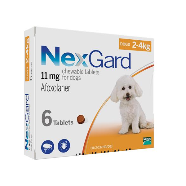 Nexgard Chewable for Small Dogs (4lb - 10lb) 6 Pack at Bestflea