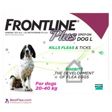 Frontline Plus For Dogs - Medium 23-44lbs (6 Pipettes)