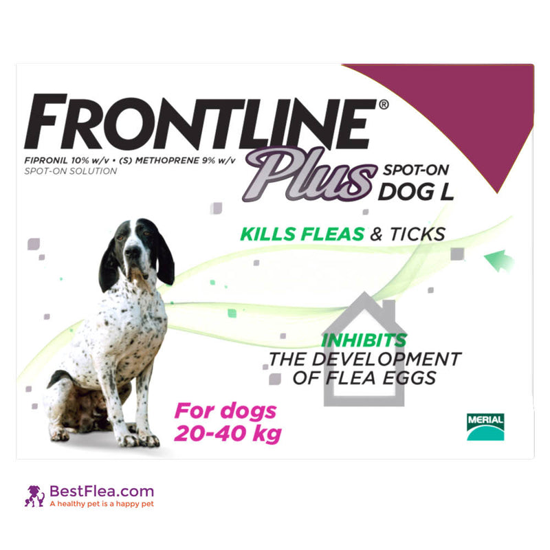 Frontline Plus For Dogs - Large 45-88lbs (6 Pipettes)