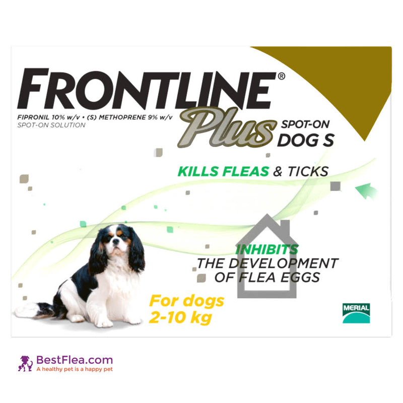 Frontline Plus For Dogs - Small 0.5-22lbs (6 Pipettes)